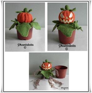 THREE_PUMPKINS_medium2